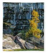 Tree At Picture Rock Cruise Fleece Blanket
