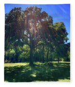 Tree Bathed In Sun Fleece Blanket