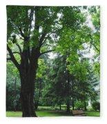 Tree Bench Fleece Blanket