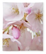Tree Blossoms Art Prints Canvas Pink Spring Blossoms Baslee Troutman Fleece Blanket