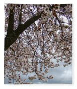 Tree Blossoms Landscape 11 Spring Blossoms Art Prints Giclee Sky Storm Clouds Fleece Blanket