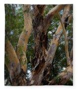 Tree Branch Texture 1 Fleece Blanket