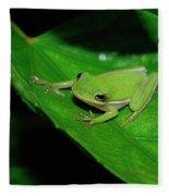 Tree Frog On Hibiscus Leaf Fleece Blanket