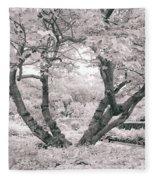 Tree Of Life II Fleece Blanket
