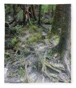 Tree Roots And Lithia Springs Fleece Blanket