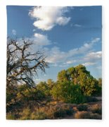 Tree Sky Utah Fleece Blanket