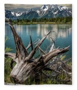 Tree Stump On The Northern Shore Of Jackson Lake At Grand Teton National Park Fleece Blanket