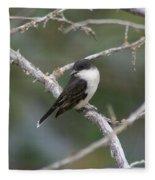 Tree Swallow Fleece Blanket