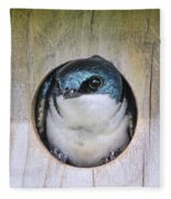 Tree Swallow In Nest Box Fleece Blanket