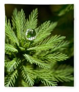 Tree Top Dew Drop Fleece Blanket