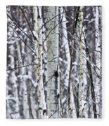 Tree Trunks Covered With Snow In Winter Fleece Blanket