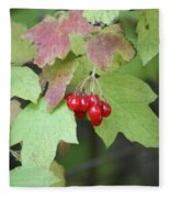 Tree With Red Berry Fleece Blanket