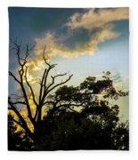 Treeline Silhouette Fleece Blanket