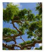 Trees In Bermuda Fleece Blanket