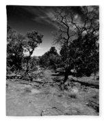 Trees Of Canyon Lands Fleece Blanket