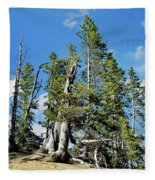 Trees On The Edge 1 Fleece Blanket