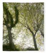 Trees Fleece Blanket
