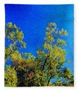 Treetops Fleece Blanket