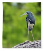 Tri-color Heron Fleece Blanket