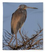 Tri Color Heron Fleece Blanket