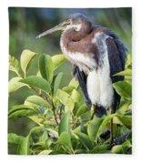 Tri-colored Heron On Guard  Fleece Blanket