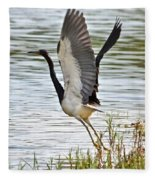 Tri Colored Heron Takeoff Fleece Blanket