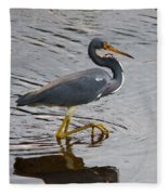 Tri-colored Heron Wading In The Marsh Fleece Blanket