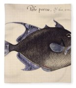 Trigger-fish, 1585 Fleece Blanket