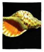 Triton Trumpet Seashell Cymatium Tritonis Fleece Blanket