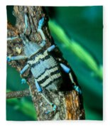 Tropical Blue Weevil Fleece Blanket