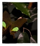 Tropical Buterfly Fleece Blanket