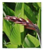 Tropical Flower Buds Fleece Blanket