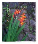 Tropical Orange Lily Fleece Blanket