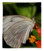 Tropical White Butterfly Fleece Blanket