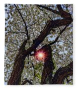 Trunk Of A Cherry Tree Blooming With White Flowers Fleece Blanket