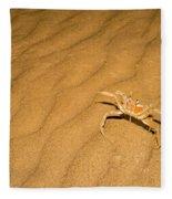 tufted ghost crab Ocypode cursor on sand Fleece Blanket
