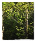 Branches Of Lovely Light Fleece Blanket