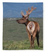 Tule Elk Bull Bugling Fleece Blanket