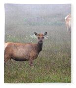 Tule Elk In Fog Fleece Blanket