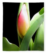Tulip 1 Fleece Blanket