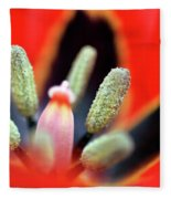 Tulip At Amatzia Forest - 5 Fleece Blanket