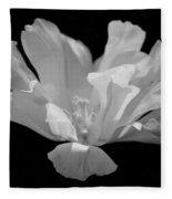 Tulip - Bw Fleece Blanket