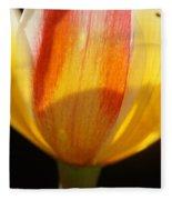 Tulip Calyx In Backlight 4 Fleece Blanket