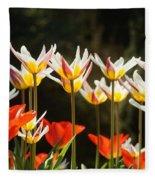 Tulip Field 11 Fleece Blanket