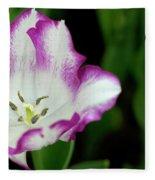 Tulip Flower Fleece Blanket by Pradeep Raja Prints
