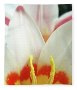 Tulip Flowers Art Prints 4 Spring White Tulip Flower Macro Floral Art Nature Fleece Blanket