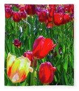 Tulip Garden In Bloom Fleece Blanket