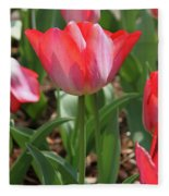 Tulip Magic Fleece Blanket