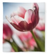 Pink Tulip Closeup Fleece Blanket