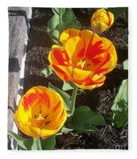 Tulip Red And Orange Fleece Blanket